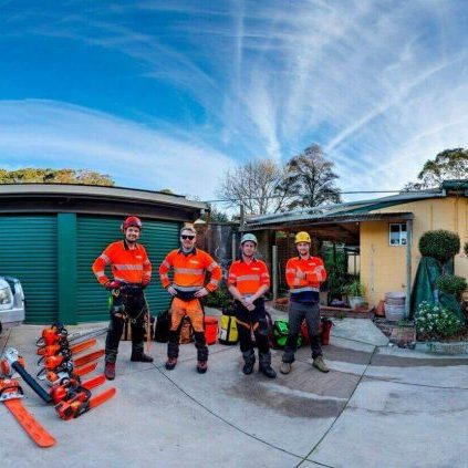 TreeTech-team-at-work